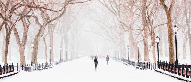 Девушка в парке в снежную зимнюю погоду